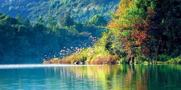 凤亭湖露营点在哪里