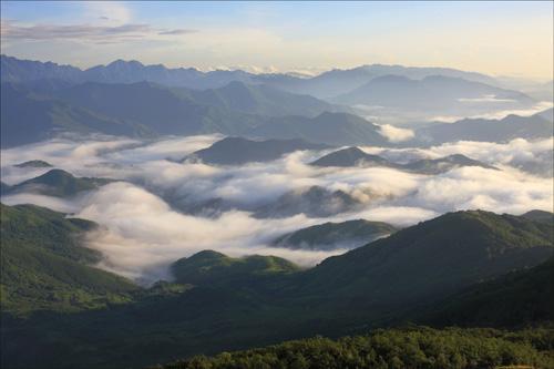 十万大山在广西哪里