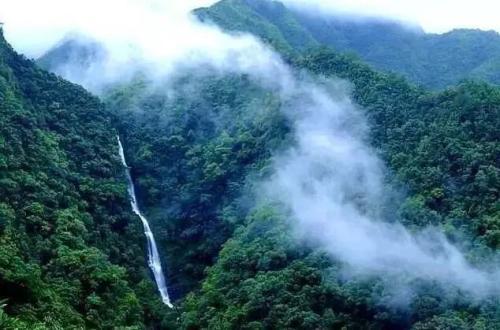 广西十万大山国家森林公园